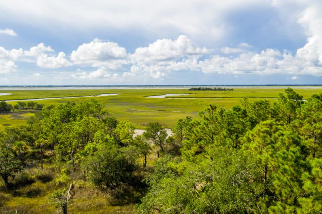 Lot 113 Old House Lane, Dewees Island, SC 29451 (#19011777) :: The Cassina Group