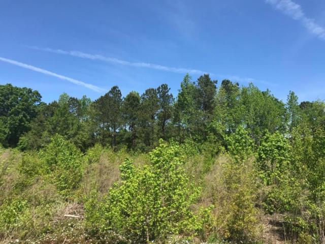 0 Epps Rd, New Zion, SC 29111 (#19011839) :: The Cassina Group