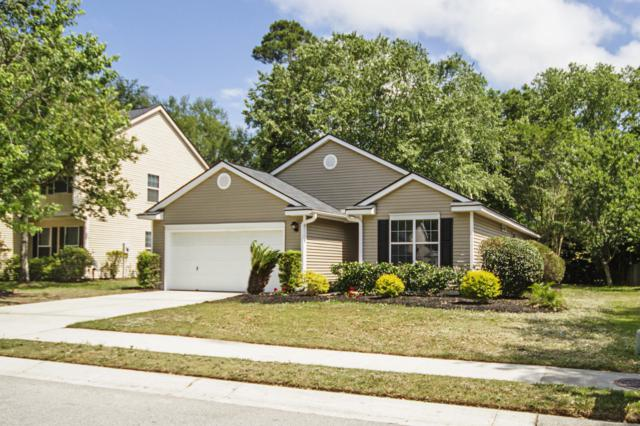 175 Revolution Drive, Mount Pleasant, SC 29464 (#19013529) :: The Cassina Group