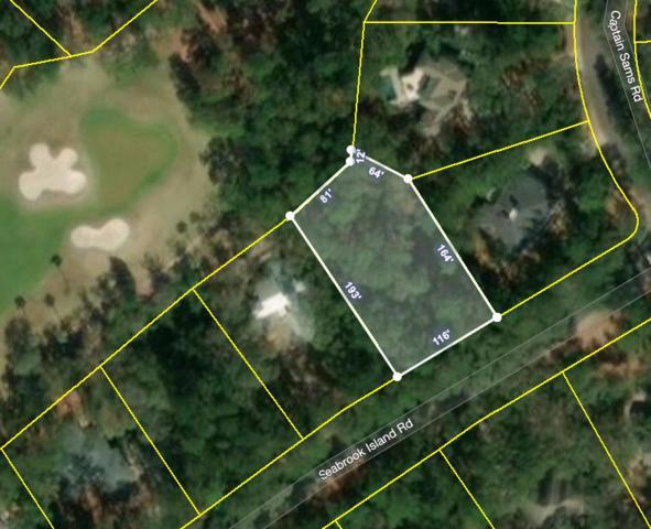 3011 Seabrook Island Road, Johns Island, SC 29455 (#19014433) :: The Cassina Group