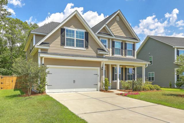 8170 Ronda Drive, North Charleston, SC 29406 (#19014656) :: The Cassina Group