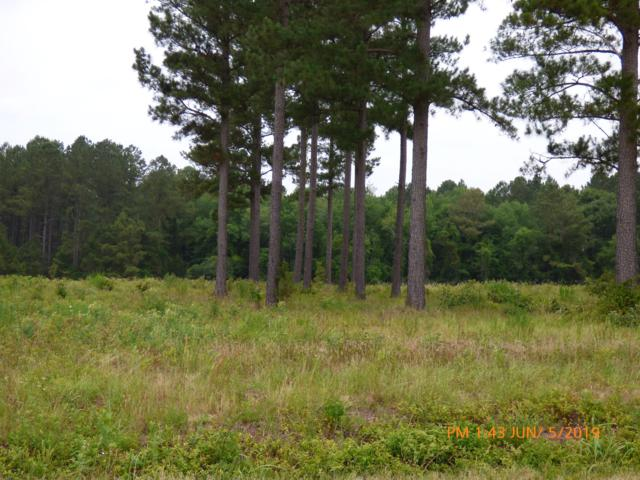 Lot 20/21 Burkelo Road, Wagener, SC 29164 (#19017402) :: The Cassina Group