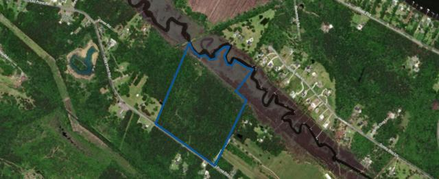 3232 Old Pond Road, Johns Island, SC 29455 (#19018062) :: Realty One Group Coastal