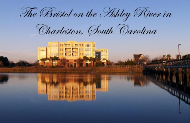 5017 Old Bridgeview Lane #5017, Charleston, SC 29403 (#19018098) :: The Cassina Group