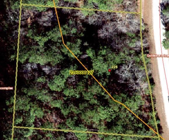 226 Deer Ridge Court, Huger, SC 29450 (#19019706) :: The Cassina Group