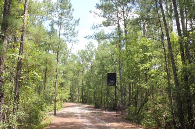 0 Strong Road, Andrews, SC 29510 (#19020398) :: The Cassina Group