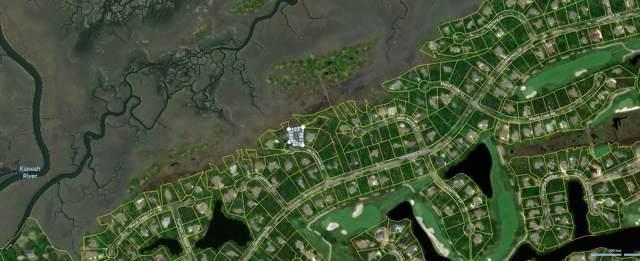 67 Persimmon Court, Kiawah Island, SC 29455 (#19020842) :: The Cassina Group