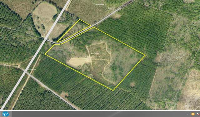 0 Old Forreston Road, Greeleyville, SC 29056 (#19021037) :: The Cassina Group