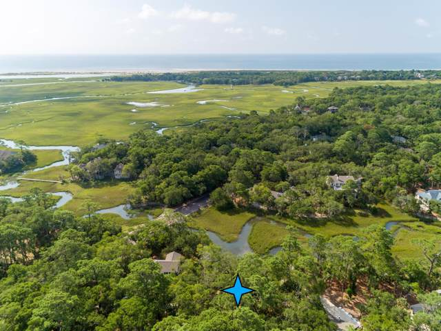 2325 Cat Tail Pond Road, Johns Island, SC 29455 (#19021161) :: The Cassina Group