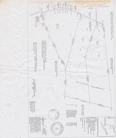 Tract 2-B Old Spell Road, Saint George, SC 29477 (#19021264) :: The Cassina Group