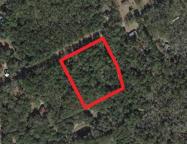 6371 Bears Bluff Road, Wadmalaw Island, SC 29487 (#19023167) :: The Cassina Group