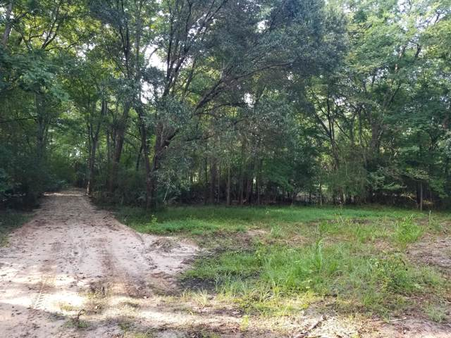 3972 Bulow Plantation Rd., Johns Island, SC 29455 (#19023306) :: Realty One Group Coastal