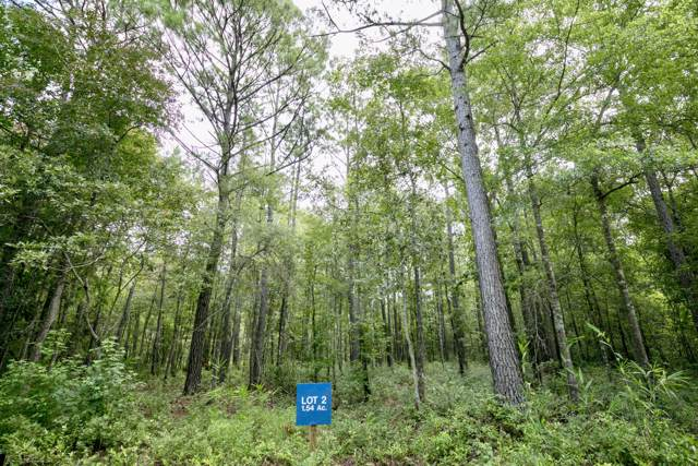Lot 2 White Road, Awendaw, SC 29429 (#19023943) :: The Cassina Group