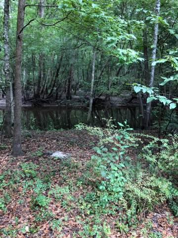0 Catfish Lane, Ridgeville, SC 29472 (#19024664) :: The Cassina Group