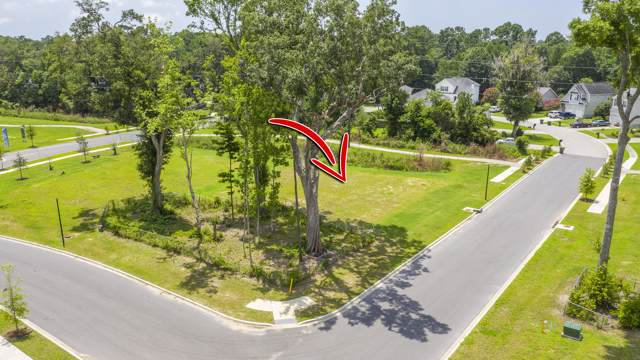 2214 Saint Johns Woods Parkway, Johns Island, SC 29455 (#19025199) :: The Cassina Group