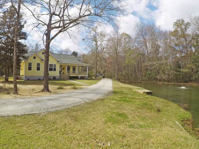 6035 Bay Pond Road, Ravenel, SC 29470 (#19025623) :: The Cassina Group