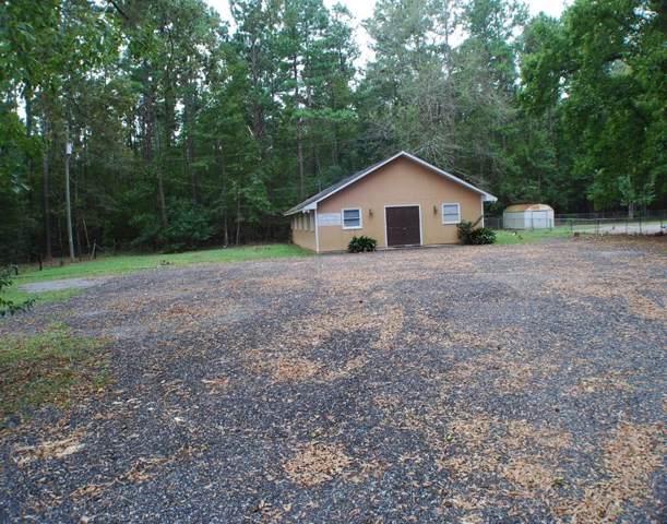 101 Jean Wells Drive, Goose Creek, SC 29445 (#19026537) :: The Cassina Group