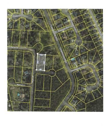 000 Almond Street, Summerville, SC 29483 (#19026732) :: The Cassina Group