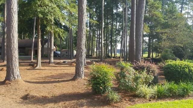 111 Wateree Drive, Santee, SC 29142 (#19027779) :: The Cassina Group