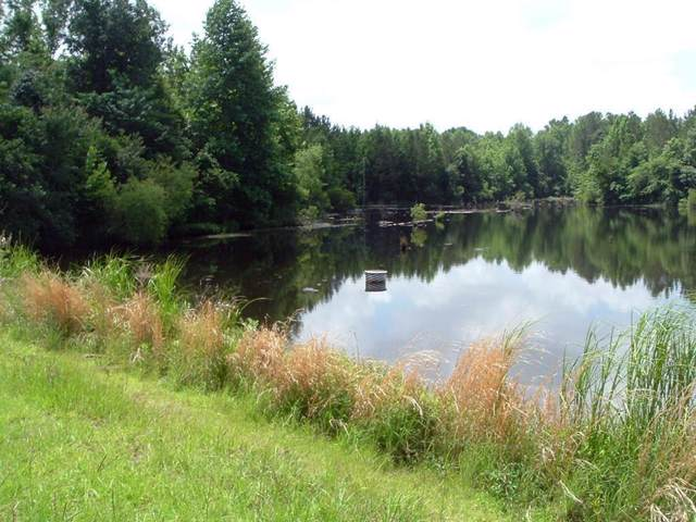 Lot#2 Row Boat Lane, Elloree, SC 29047 (#19028618) :: The Cassina Group