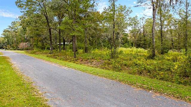 211 Waters Court, Walterboro, SC 29488 (#19030208) :: Realty ONE Group Coastal