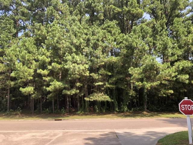 1018 Mount Whitney Drive, Summerville, SC 29483 (#19030311) :: The Cassina Group