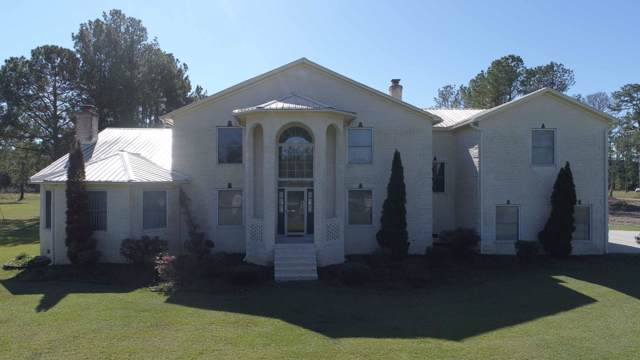3781 N Highway 17A, Jamestown, SC 29453 (#19030929) :: The Cassina Group