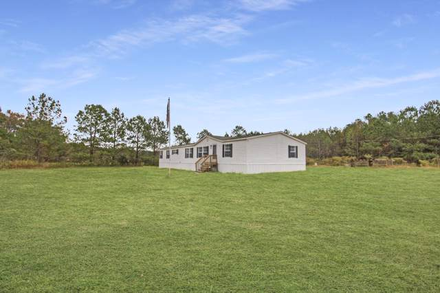 357 Mulberry Road, Saint George, SC 29477 (#19031526) :: The Cassina Group