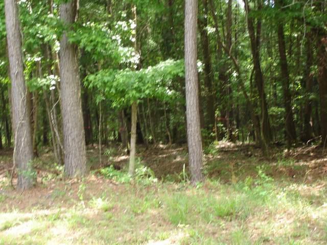 8754-B Savannah Hwy., Adams Run, SC 29426 (#19032672) :: The Cassina Group