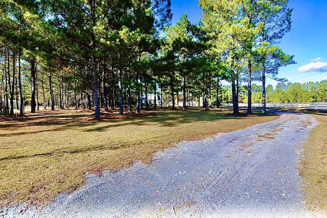 105 Mini Farm Road, Bonneau, SC 29431 (#19032921) :: The Cassina Group
