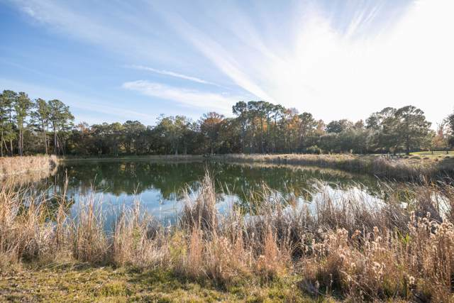 37 A Nesting Egret Drive, Johns Island, SC 29455 (#19033774) :: Realty One Group Coastal