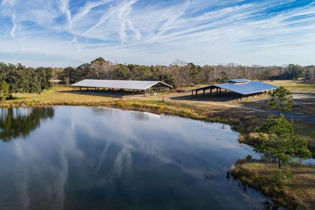 4080 River Road, Johns Island, SC 29455 (#19033927) :: The Cassina Group