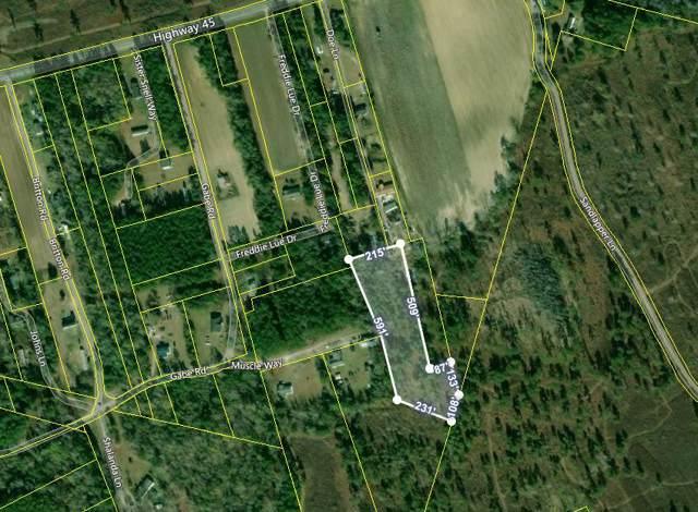 0 Doe Lane, Pineville, SC 29468 (#19034062) :: The Cassina Group