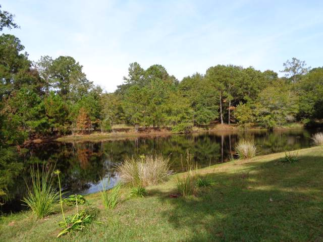 14 Awendaw Lakes Boulevard, Awendaw, SC 29429 (#20001258) :: The Cassina Group