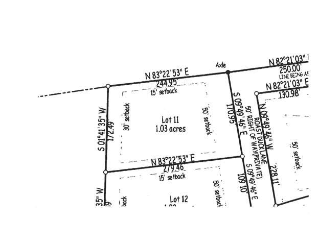 11 Roast Duck Lane, Johns Island, SC 29455 (#20001304) :: The Cassina Group