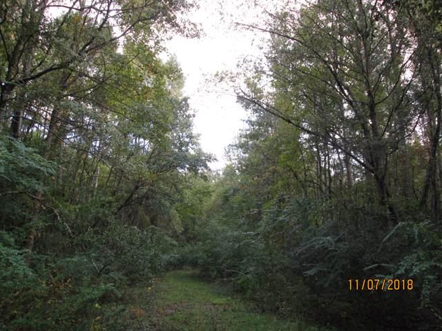 240 Linning Road, Summerville, SC 29483 (#20001384) :: The Cassina Group