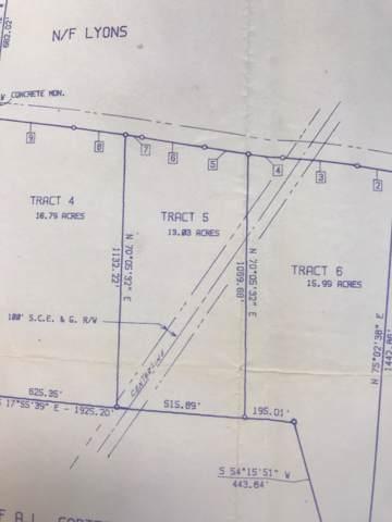 00 Harrison Road, Smoaks, SC 29481 (#20001595) :: The Cassina Group