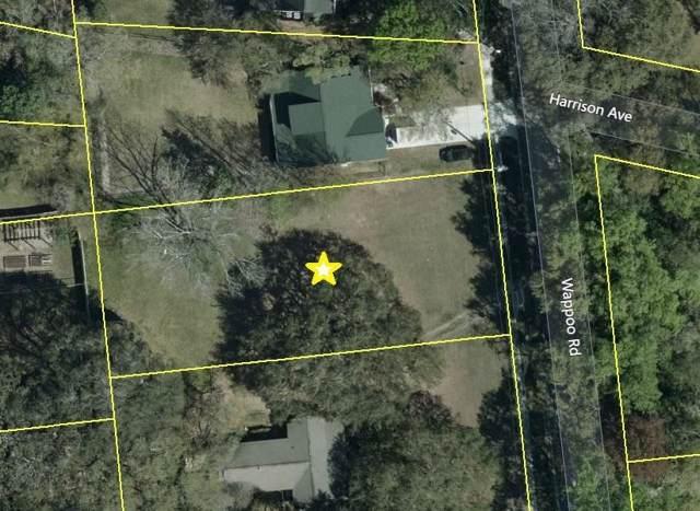 435 Wappoo Road, Charleston, SC 29407 (#20002774) :: Realty One Group Coastal