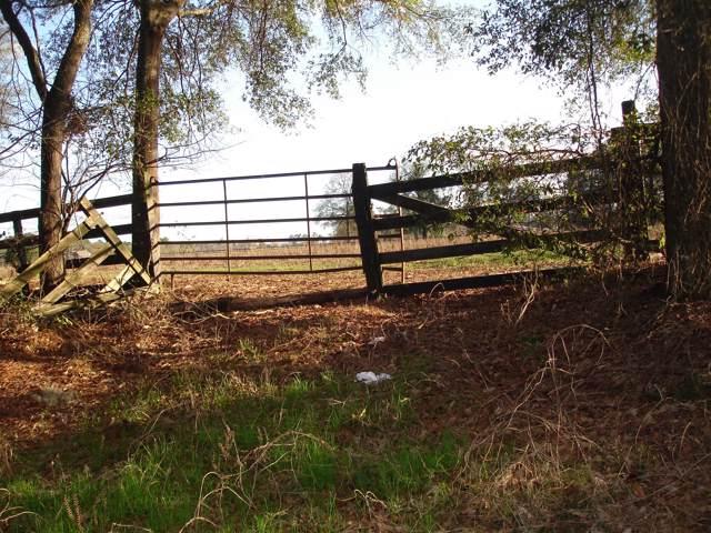 4 Ruffin Rd., Walterboro, SC 29488 (#20003023) :: The Cassina Group