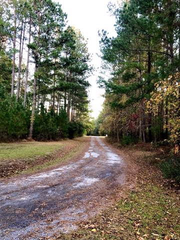 0 Rooster Ridge Road, Summerville, SC 29483 (#20003196) :: Realty One Group Coastal