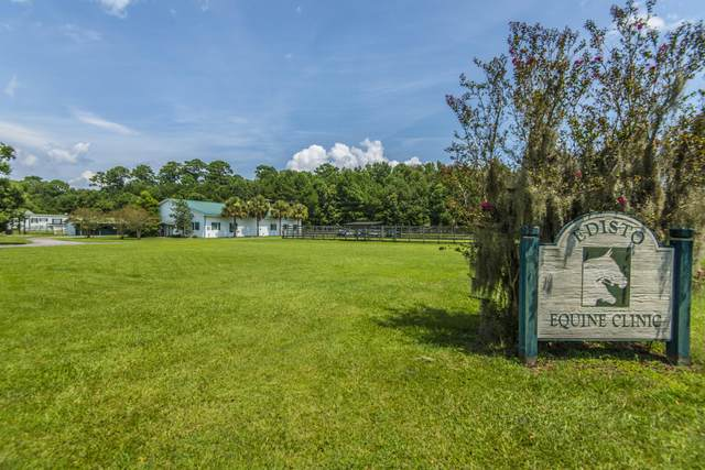 7796 White Point Road, Hollywood, SC 29449 (#20003850) :: The Cassina Group