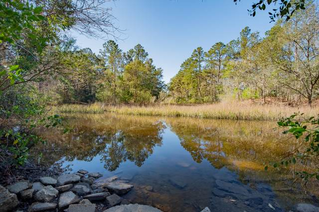 2841 Plow Ground Road, Johns Island, SC 29455 (#20004366) :: The Cassina Group