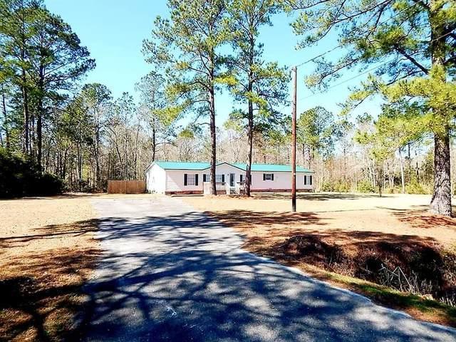 1091 Creekside Lane, Walterboro, SC 29488 (#20005201) :: The Cassina Group