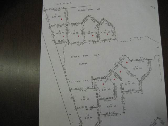 0 Tailrace Drive, Moncks Corner, SC 29461 (#20005643) :: Realty One Group Coastal