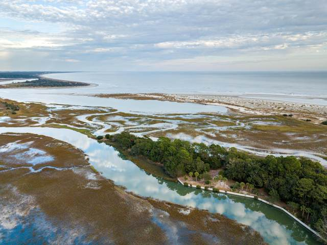 1172 Oyster Catcher Court, Seabrook Island, SC 29455 (#20005743) :: The Cassina Group