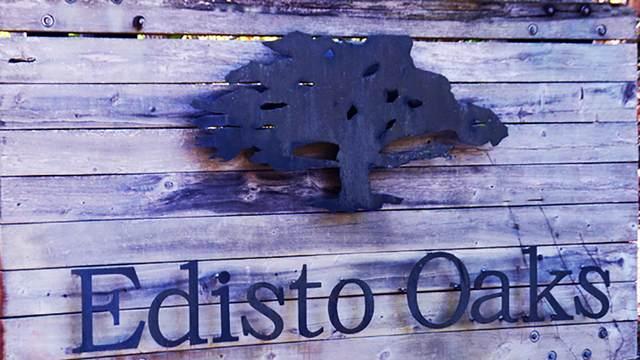 20 Blackbear Drive Lot 20, Edisto Island, SC 29438 (#20005818) :: The Cassina Group