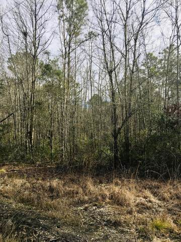 0 Cane Branch Road, Walterboro, SC 29488 (#20007372) :: Realty One Group Coastal