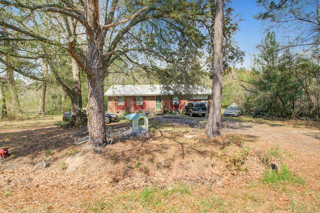 157 Russell Circle, Saint George, SC 29477 (#20007958) :: The Cassina Group