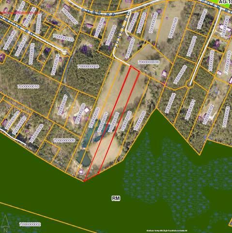 7281 Jones Road Lane, Awendaw, SC 29429 (#20008458) :: Realty One Group Coastal