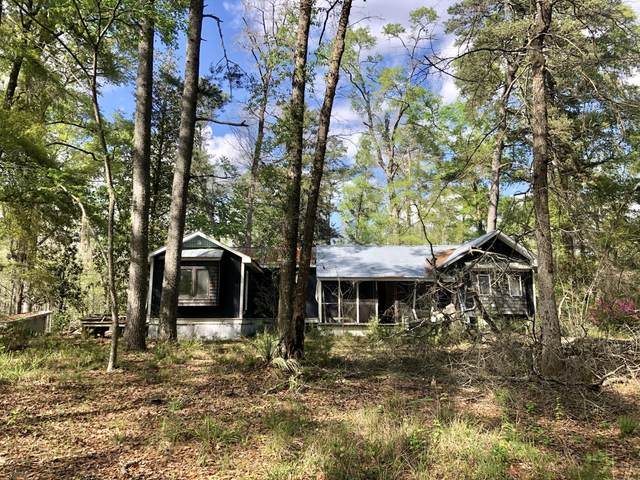 124 Tree Frog Place, Ridgeville, SC 29472 (#20008511) :: The Cassina Group